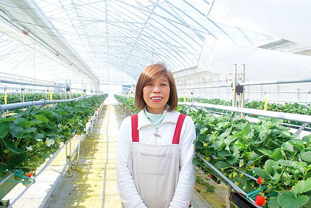 ときめき農産
