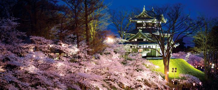 定番から穴場まで!この春行くべき新潟の桜・お花見スポット23選