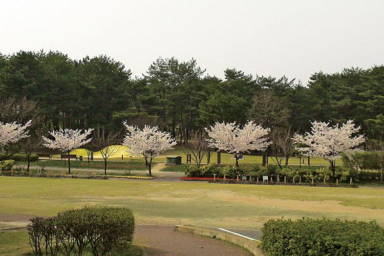 県立紫雲寺記念公園750500
