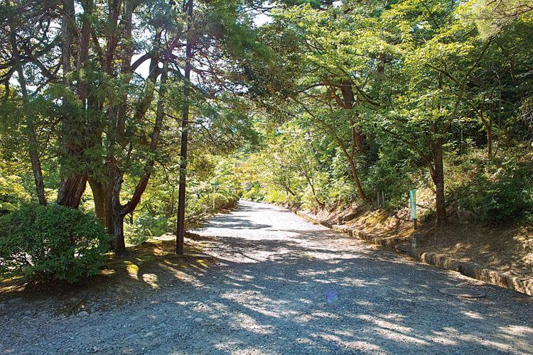 弥彦公園-風景