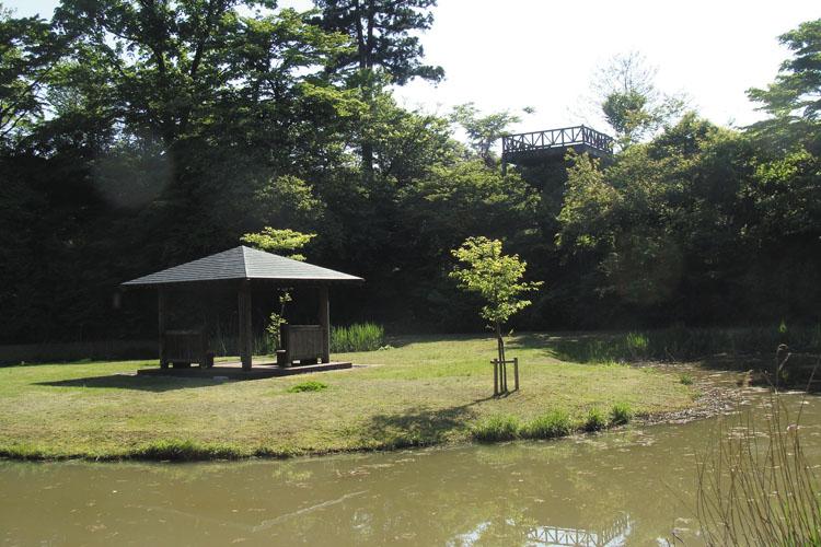 巴ヶ丘公園-メイン公園