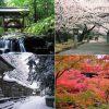 【PR】歩いて、食べて、癒されて。弥彦村おすすめスポットまとめ ~イベントカレンダー編~