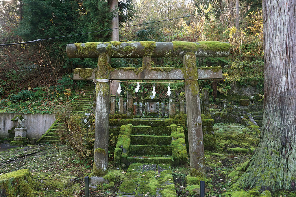 諏訪神社-本殿鳥居