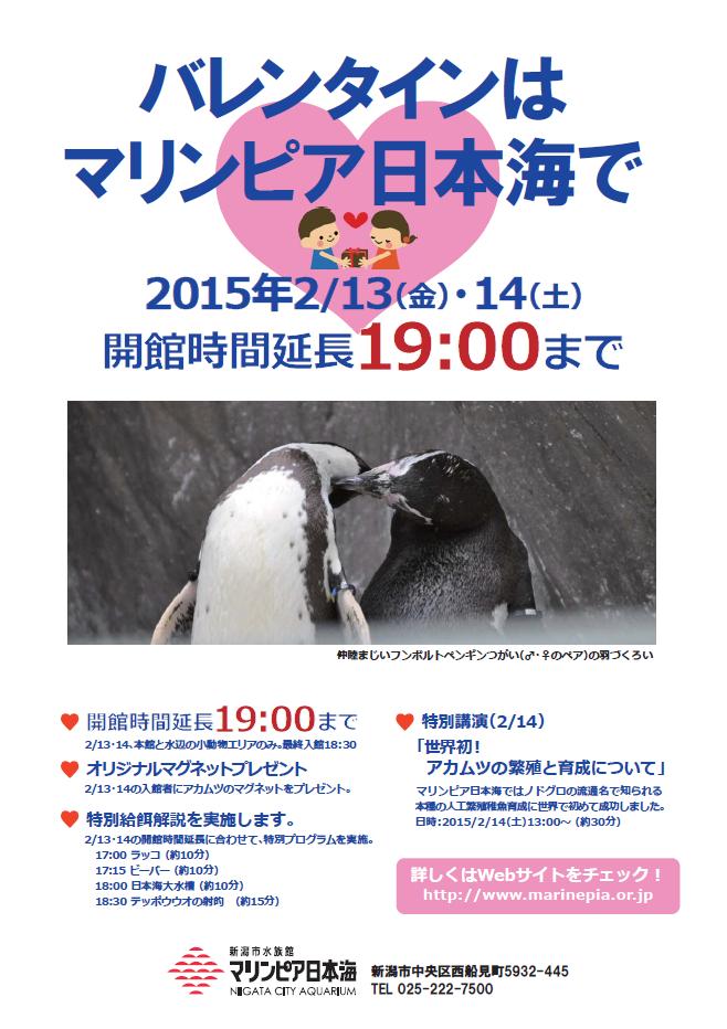 SnapCrab_NoName_2015-1-30_19-46-50_No-00