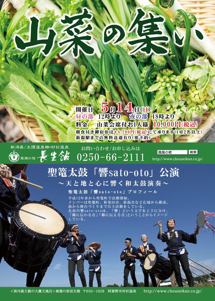 山菜チラシ