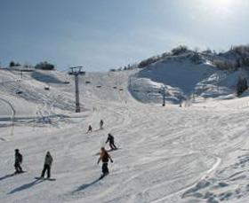 場 スキー 松之山 温泉