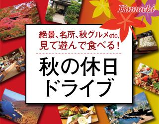 http://www.week.co.jp/tokusyuu//komachi0925-akidrive/img/bnr_320.jpg