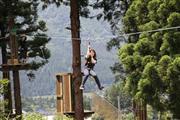 スキー場で夏も楽しめる森林アウトドアパーク