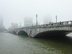 ニュース これは珍しい、萬代橋の霧