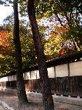 新潟-中野邸美術館