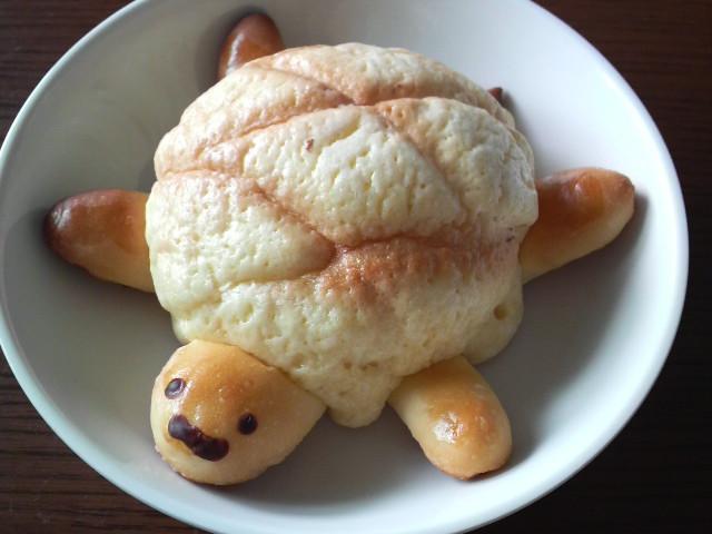 かめさんメロンパン