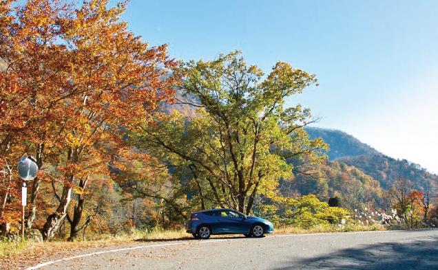 新潟の紅葉ドライブ定番コース「津南 秋山郷」-ハイウェイNEWS