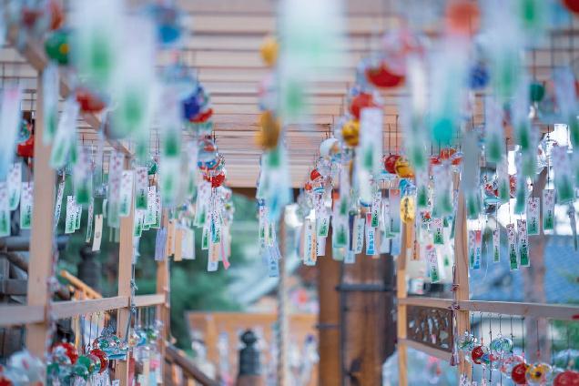全国の風鈴が集結!幻想的な五泉八幡宮『七夕風鈴祭・天の川巡り』