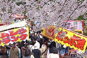 白山神社春まつり