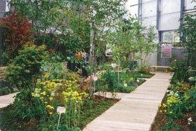 観賞温室の企画展「万葉の植物」