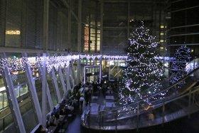 NEXT21 クリスマスイルミネーション