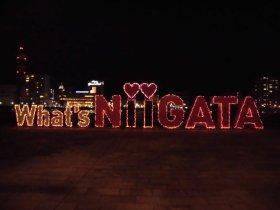 What's NIIGATAイルミネーション