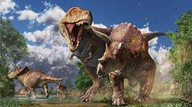 恐竜展〜科学が解き明かす恐竜のすがた〜