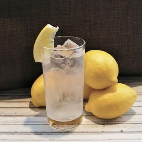 新潟 レモンサワーの陣2019