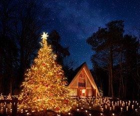 軽井沢高原教会 星降る森のクリスマス 2020
