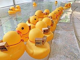 新潟市小須戸温泉健康センター花の湯館『父の日の苦労風呂』