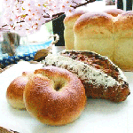新潟市にある人気のお花見スポット&その近場のおいしいパン屋まとめ