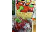 オモシロ野菜発見 わくわく広場……�B