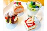 ドルチェは桜のロールケーキなどの4種類