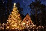 無数のキャンドルが教会の森を照らす「クリスマスキャン ...