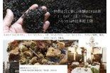 古都フィレンツェのラグジュアリー紅茶日本初上陸